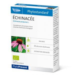 Phytostandard Echinacea - fitoterapija echinacea - 20 kapsula/tableta